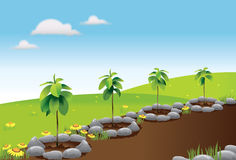 afforestation clipart 1