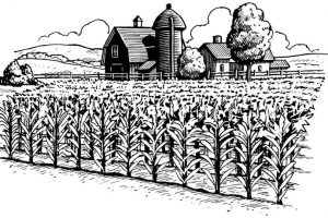 agriculture clipart black and white 4