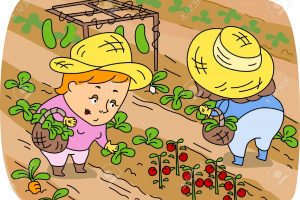 agriculture farming clipart 5