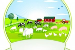 agriculture field clipart 9
