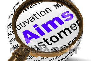aims and objectives clipart 4