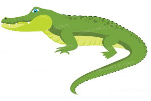 alligator clipart 10