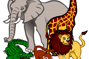 animal clipart png 11