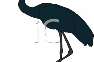 animal crane clipart 9
