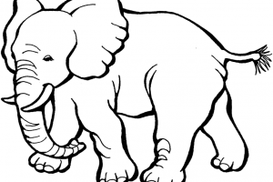 animals black and white clipart 2