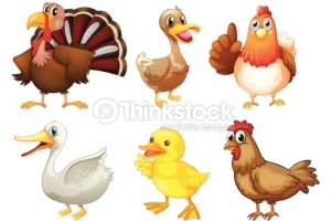 animals live in land clipart 8