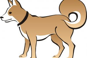 anjing clipart