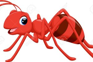 ant clipart 9