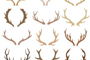 antlers clipart 10