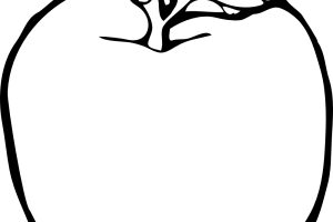 apple clipart black and white 2