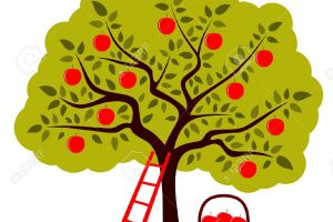 appletree clipart 6