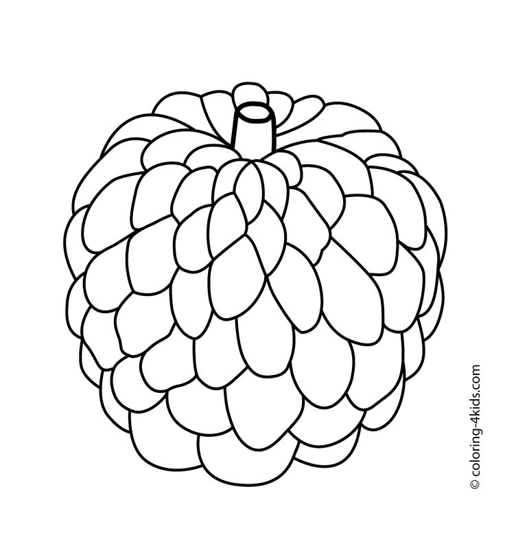 ampalaya coloring pages | atis clipart black and white | Clipart Station