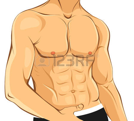 Body chest. Clipart station