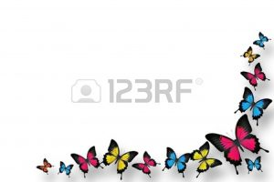 butterfly clipart border 5