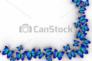 butterfly clipart border 6