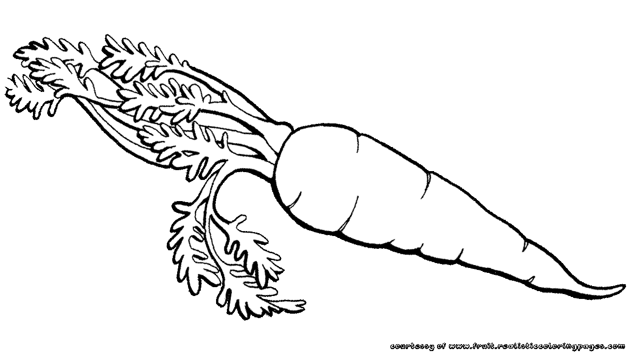 carrot clipart black and white 2 | Clipart Station for Clipart Carrot Black And White  155fiz