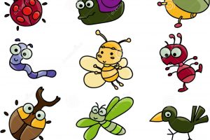 clipart collection 7