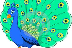 cute peacock clipart 12
