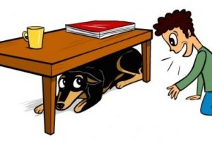 dog under the table clipart 1