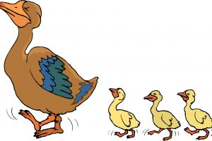 duck and duckling clipart 11