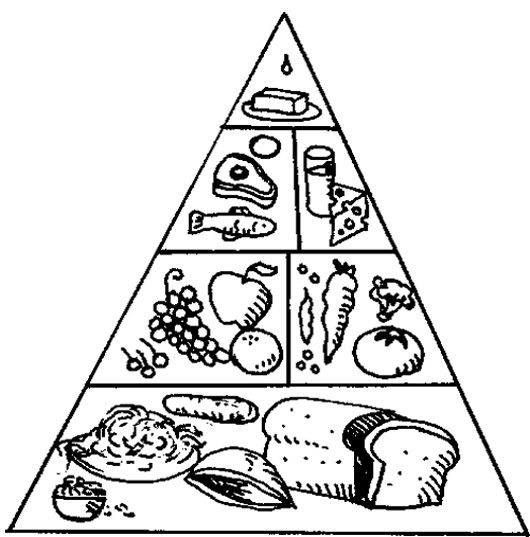 food pyramid coloring page for preschoolers - food pyramid clipart black and white 11 clipart station