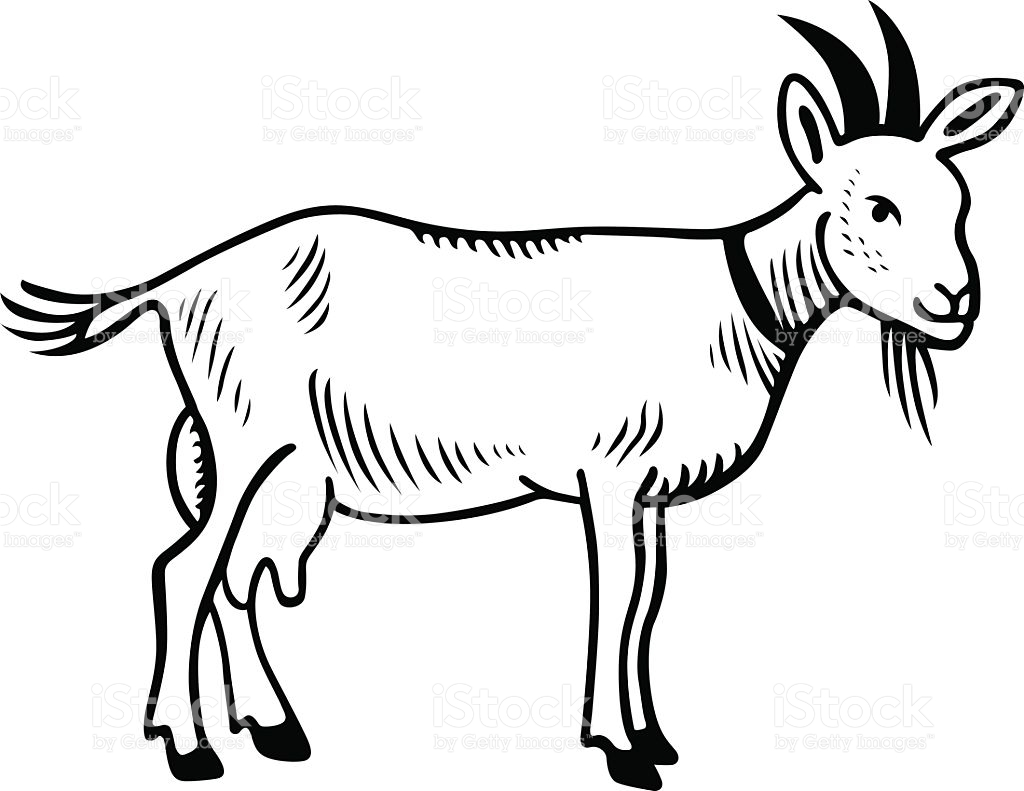 goat clipart black and white 4 clipart station rh clipartstation com goat clip art images clipart black and white goat