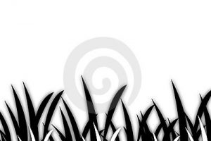 grass clipart black and white 3