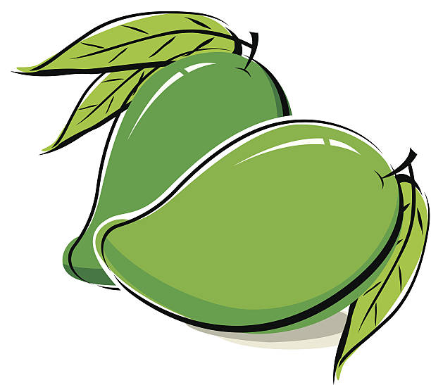 Green mango clipart 1 » Clipart Station