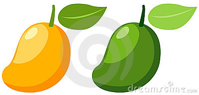 Green mango clipart 2 » Clipart Station
