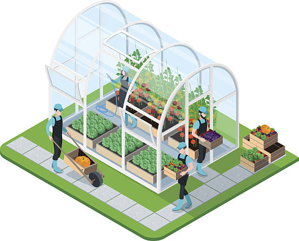 Greenhouse clipart 3 » Clipart Station