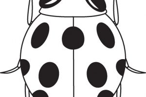 ladybug insect black white outline