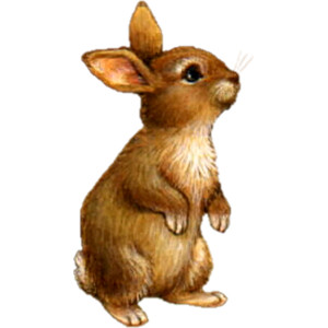 Lapin Clipart 7 Clipart Station