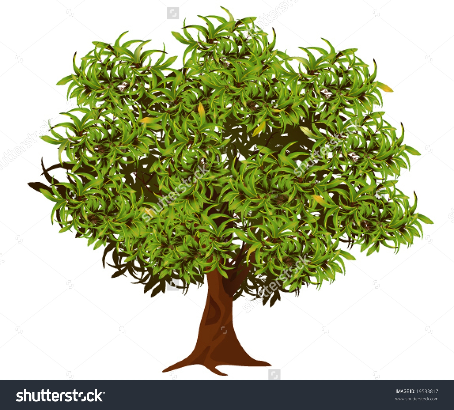 Neem Tree Clipart 10 Clipart Station