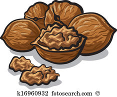 nuts clipart 3