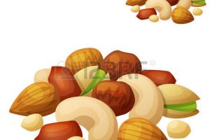 nuts clipart