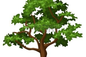 oak tree clipart 1