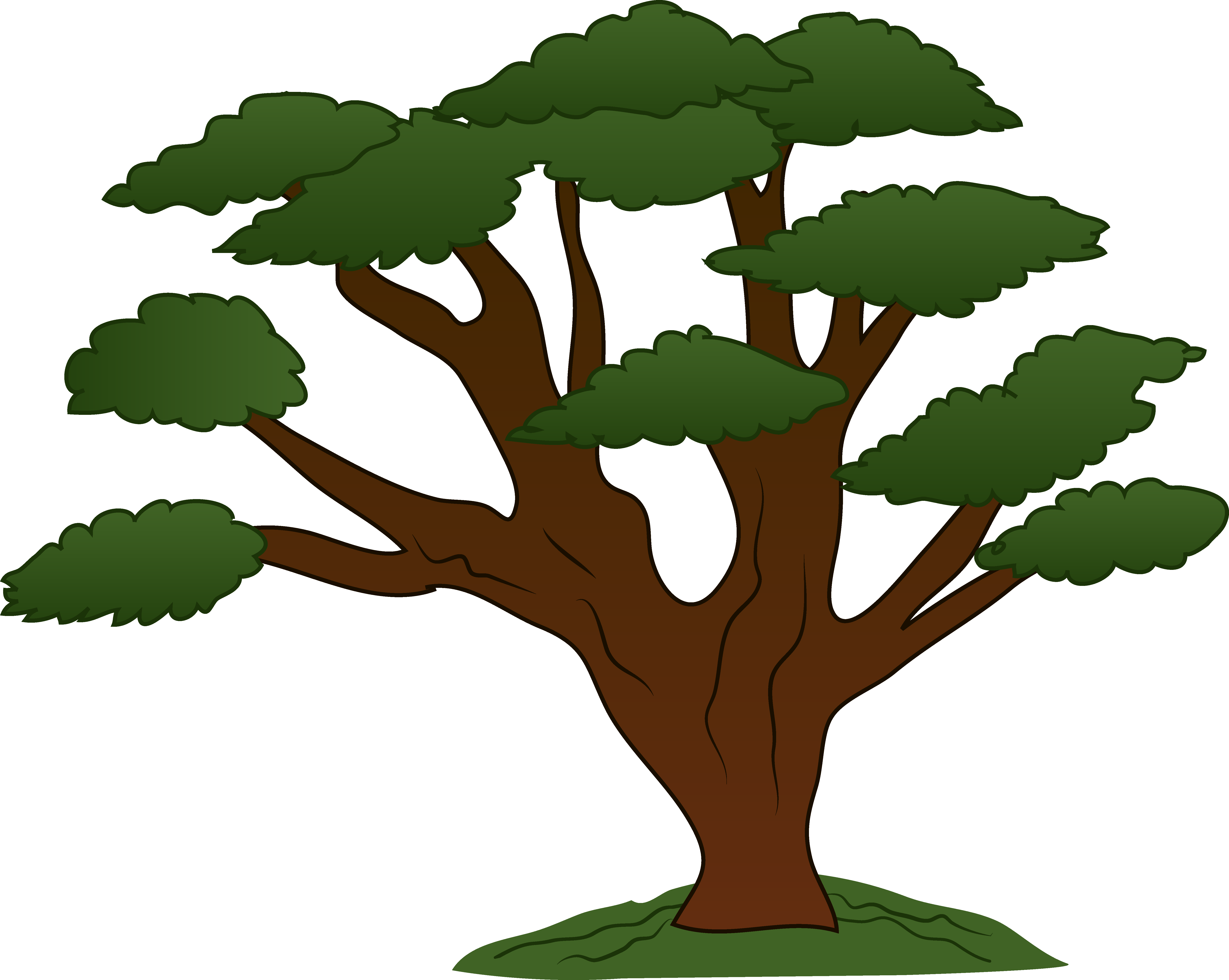 oak tree clipart 4