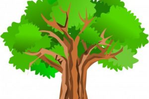 oak tree clipart 5
