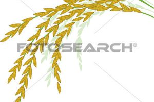 palay clipart 6