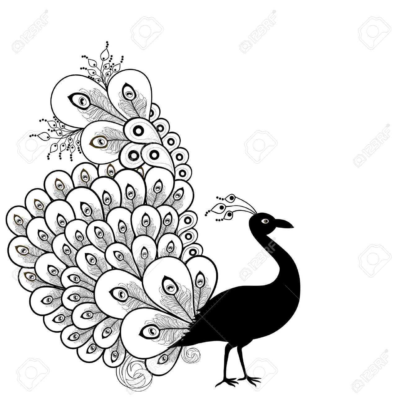 Peacock Clipart Black And White 3 » Clipart Station