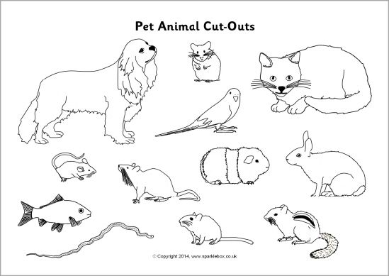 Pet Animals Clipart Black And White Clipart Station