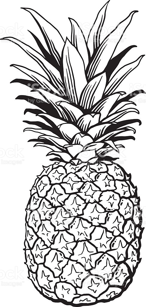 Pineapple white. Black and clipart station