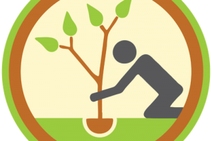 planting trees clipart 2