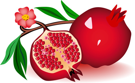 pomegranate clipart 7 clipart station rh clipartstation com clipart pomegranate juice pomegranate clip art free
