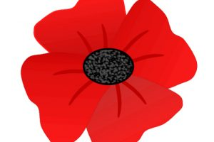 poppies clipart 4