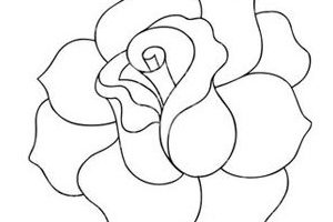 rose clipart black and white 6