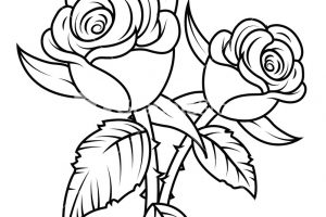 rose plant clipart black and white 2