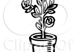 rose plant clipart black and white 3