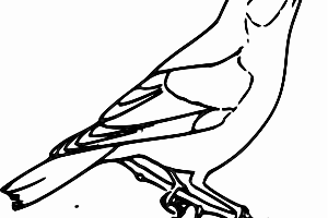sparrow clipart black and white 5