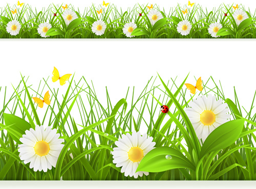 Spring green grass seamless border. Detailed vector ...